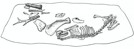 Figure 7_Fotor